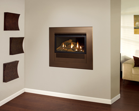 Mantis fireplace mantis fireplace mantis fireplace mantis high efficiency gas teraionfo